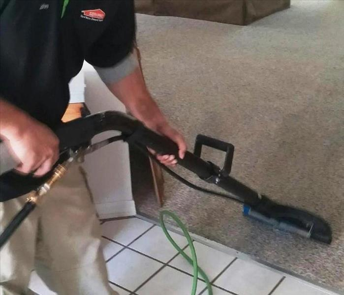 Cleaning Back to School Carpet and Upholstery Cleaning