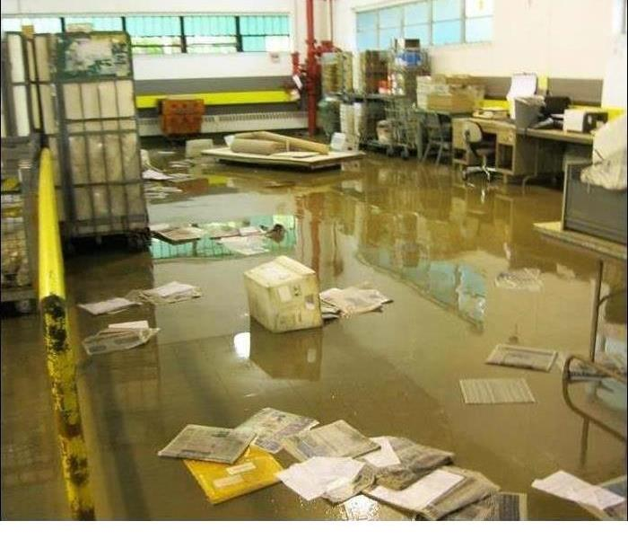 Commercial When You Are Faced With Flood Damage In Destin Call Our Trusted Professionals