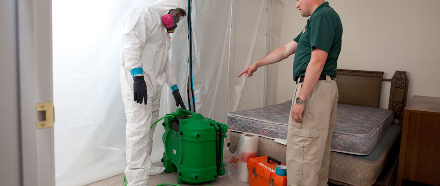 Fort Walton Beach, FL mold removal process